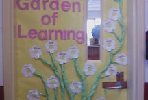 Plants / Plants in the classroom.
