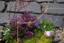 The Pothole Gardener