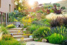 Mignon Dunbar - Home & Garden
