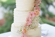 Wedding cakes / Wedding cakes we have photographed