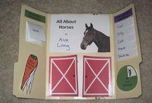 lapbook koně