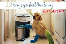 Cleaning Tips / by Sam Long