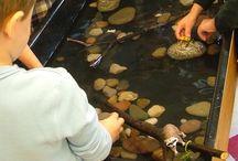 Barn möter natur