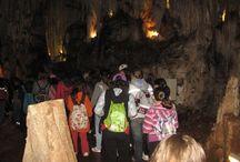 Excursión a las Cuevas de Valporquero, León Campamentos de inglés GMR / Preciosa Cueva del Valporquero con un itinerario visitable de 1.300 m de longitud, recorre seis salas con gran diversidad de formaciones geológicas, Nuestros campers junto a los profesores nativos recorren una parte de esta cueva tan emblemáticad de la provincia de León.