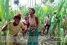 UGANDA / Uganda, People of Uganda, Culture of Uganda