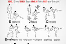 Martial arts workout