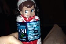 Elf on the Shelf! / by Walleen Williams