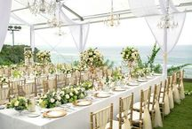 Tiffany & White Decode Ideas