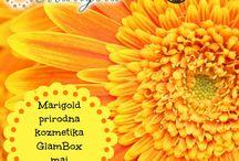 GlamBox maj / Luksuzni kozmetički proizvodi koji će obogatiti majsko izdanje GlamBox-a.