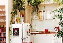 Indoor Plants / by Hannah Alyse Benjamin