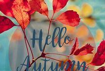 Hello Outono!