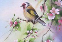 Ζωγραφική πουλια