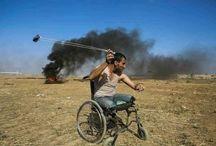 palesztinságok