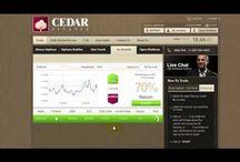 Trade Forex Online