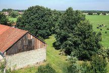 Hochzeitslocation mit Scheune *The White Barn* in Baruth/ Mark / Scheunenhochzeiten
