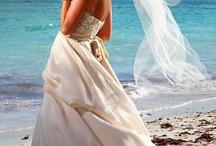 Lauren & Brett's Wedding