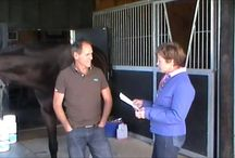 Blyth Tait NZ Olympian & World Champion Eventer / Blyth Tait winning strategy; 'Feed Simple, Affordable & Effective'
