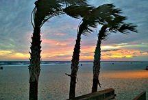 The Gulf Beaches in Alabama / The world of life. fun, sand and sun