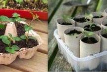Jardinage Astuces