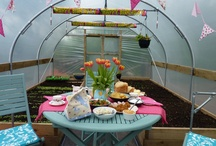 Fun with Polytunnels / www.FirstTunnels.co.uk