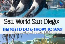 Sea World Planning
