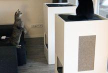 Cat furniture / All things cat