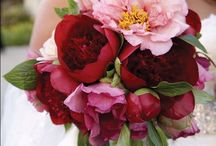 2013 Hot Wedding Trends / by WholeBlossoms Wholesale Wedding Flowers
