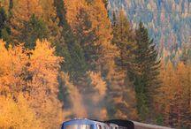 Travel and Steam Trains / by William Bennett