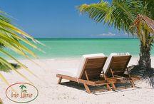 Island Honeymoon