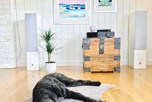 Audio & Mascotas / A nuestras mascotas también les gusta el audio de calidad y aquí las pruebas