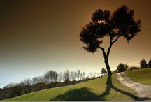 Golfs en Languedoc Roussillon