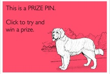 Prize Pin / by Linda Childers