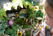 fairy gardens / by Beth Bliven