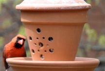 bird feeders / by Rhondda Landreth