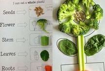 Healthy Me Preschool Theme