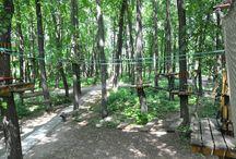 Лиана - парк / Лиана-парк в «Воздвиженском» - один из крупнейших веревочных городков в Подмосковье. В парке есть несколько различных трасс, 26 этапов протяженностью до 200 метров.