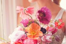 Colorful Blooms - inspiration / inspiration for colorful flowers