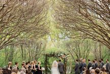 FINAL wedding project / by Hannah Evey
