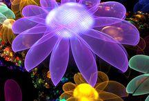 fantasic flower