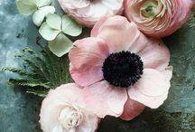 Цветы и прочие красоты