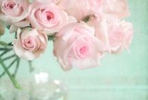 Des milliers de fleurs...
