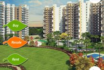 GPL Eden Heights, 2 bhk Flat Sector 70 / Many a time a person has to face a situation when he wants something but he can't have it as it belongs to somebody else, in terms of property resale market gives you an opportunity to get what you always wanted. Further if you need or want a house but you don't want to wait for years for developers to complete the building or if you want an area where the entire infrastructure is already established all you have to do is to buy a property in the resale market.