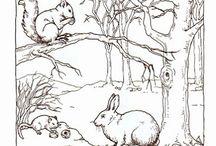 erdei állatok télen