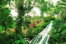 Travel Info - Caribbean