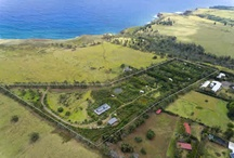 Farm and Ag Properties For Sale in Hawi