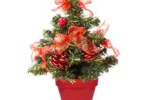 All I want for Christmas are some Ceramo pots / Ideas for using Ceramo's flower pots and planters during the Christmas Season