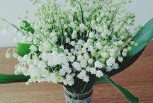 Oh les fleurs !!