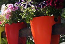 Garden inspiration / by Un jour de moins Designs