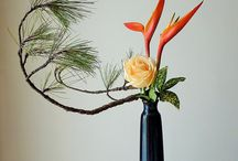 IKEBANA / by Debi Lynch
