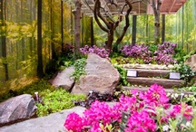 Landscaping (repinned) / by Outdoor Spaces to Live & Love